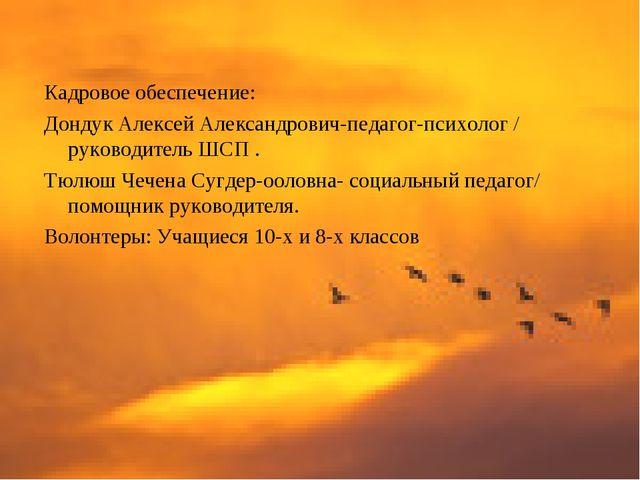 Кадровое обеспечение: Дондук Алексей Александрович-педагог-психолог / руково...