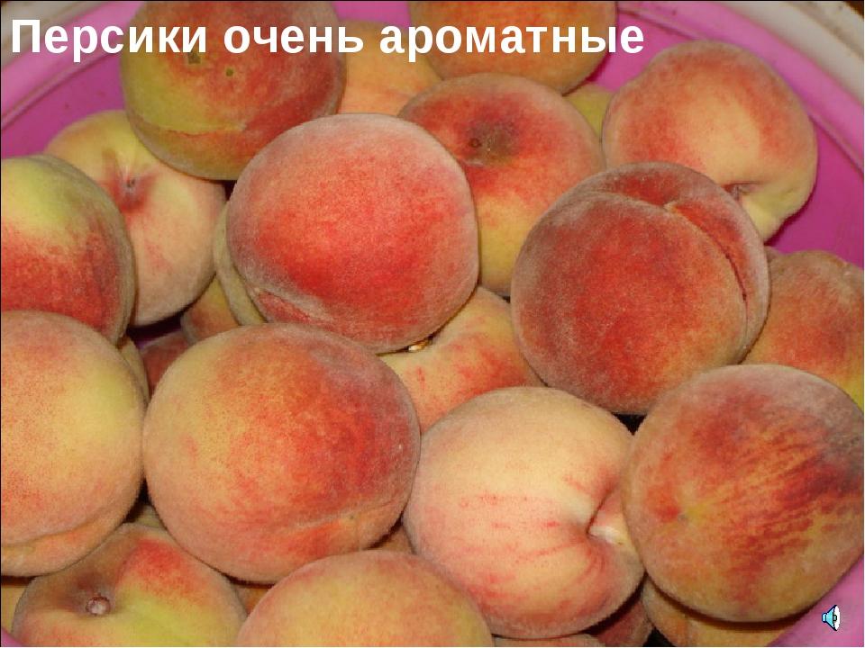 Персики очень ароматные