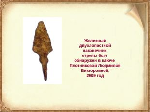Железный двухлопастной наконечник стрелы был обнаружен в ключе Плотниковой Лю