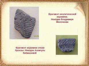 Фрагмент неолитической керамики. Находка Владимира Молочкова Фрагмент керамик