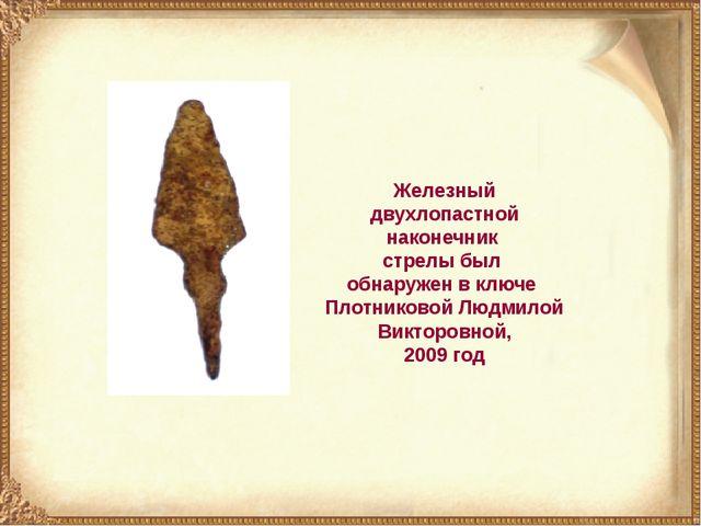 Железный двухлопастной наконечник стрелы был обнаружен в ключе Плотниковой Лю...
