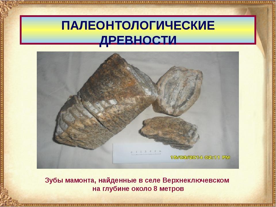 ПАЛЕОНТОЛОГИЧЕСКИЕ ДРЕВНОСТИ Зубы мамонта, найденные в селе Верхнеключевском...