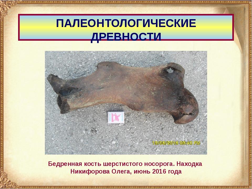ПАЛЕОНТОЛОГИЧЕСКИЕ ДРЕВНОСТИ Бедренная кость шерстистого носорога. Находка Ни...