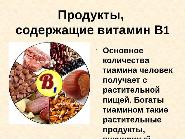 Продукты, содержащие витамин В1 Основное количества тиамина человек получает...