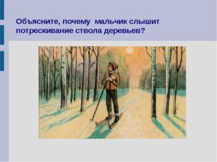 Объясните, почему мальчик слышит потрескивание ствола деревьев?
