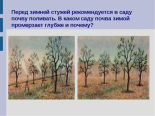 Перед зимней стужей рекомендуется в саду почву поливать. В каком саду почва з