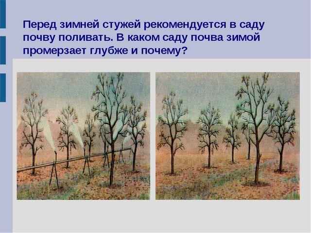 Перед зимней стужей рекомендуется в саду почву поливать. В каком саду почва з...