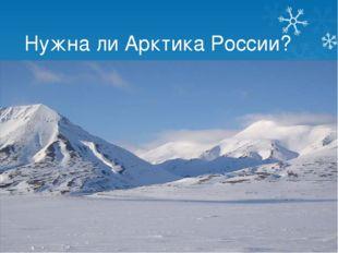 Нужна ли Арктика России?