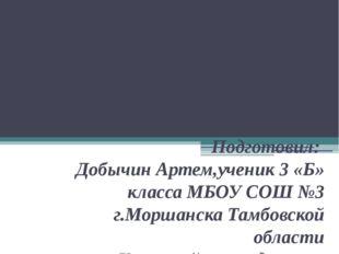 Презентация на тему: « Жизнь и творчество Льва Николаевича Толстого» Подготов
