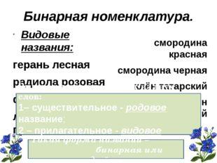 Заслуги Карла Линнея основоположник систематики ввел бинарную номенклатуру вв