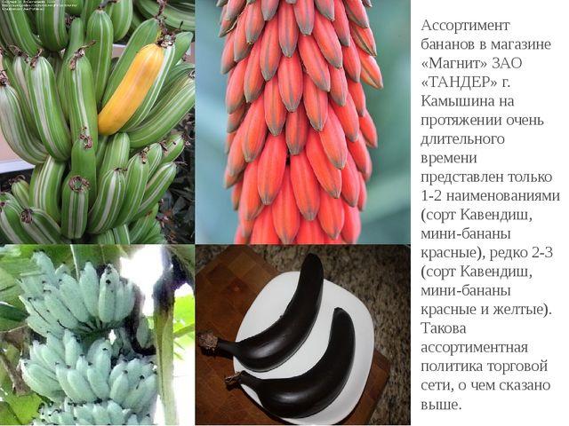 Ассортимент бананов в магазине «Магнит» ЗАО «ТАНДЕР» г. Камышина на протяжен...