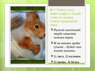 6) У Ёжика в лесу живёт подруга. Угадай о ком эта загадка. Отметь правильный