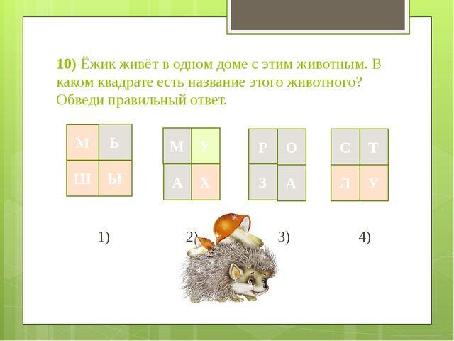 10) Ёжик живёт в одном доме с этим животным. В каком квадрате есть название э...