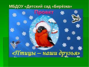 МБДОУ «Детский сад «Берёзка»