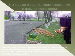 Наглядное представление озеленения школьной территории Весь школьный асфальт