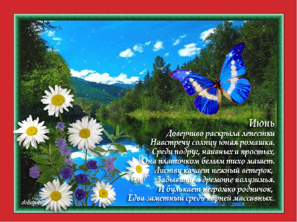 Рисунок лета и к нему стих