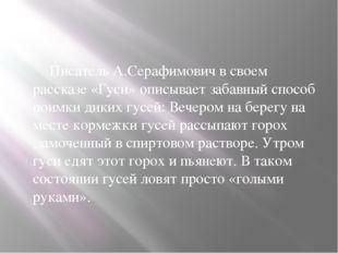 Писатель А.Серафимович в своем рассказе «Гуси» описывает забавный способ по