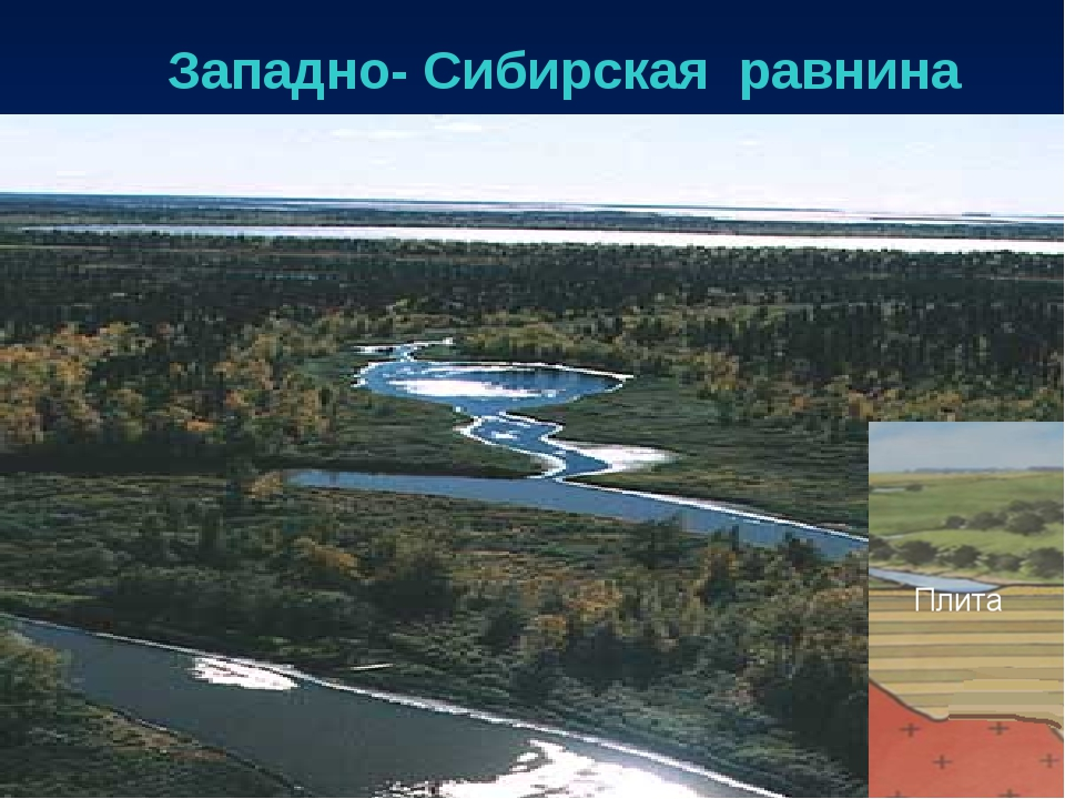 Западно- Сибирская равнина