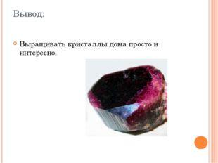 Вывод: Выращивать кристаллы дома просто и интересно.