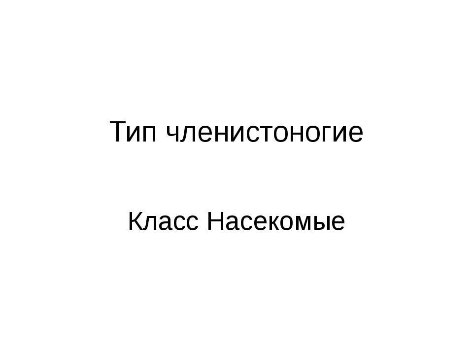 Тип членистоногие Класс Насекомые