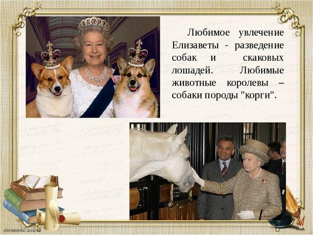 Любимое увлечение Елизаветы - разведение собак и скаковых лошадей. Любимые ж...