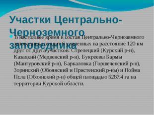 Участки Центрально-Черноземного заповедника В настоящее время в состав Центра