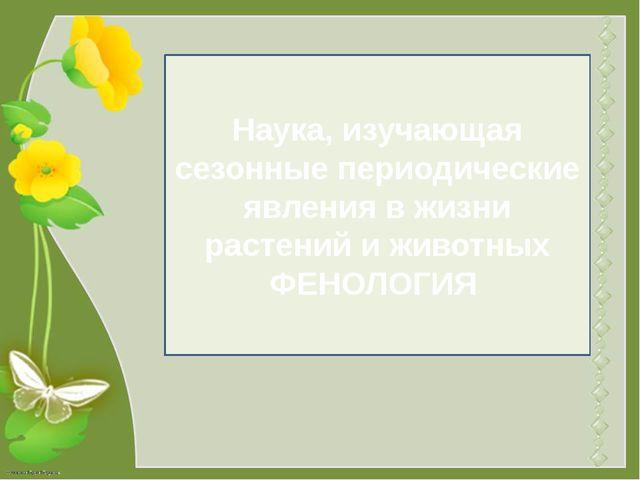 Наука, изучающая сезонные периодические явления в жизни растений и животных Ф...