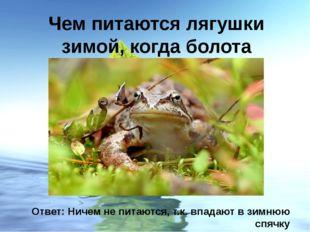 Чем питаются лягушки зимой, когда болота замерзают? Ответ: Ничем не питаются,