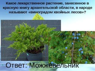 Какое лекарственное растение, занесенное в красную книгу архангельской област