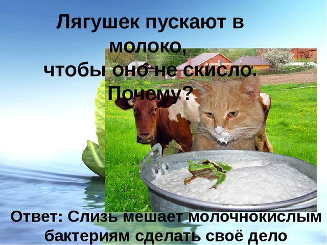 Лягушек пускают в молоко, чтобы оно не скисло. Почему? Ответ: Слизь мешает мо...