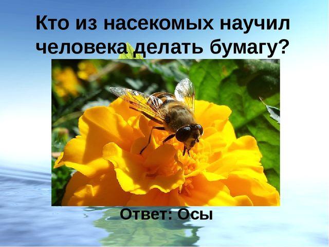 Кто из насекомых научил человека делать бумагу? Ответ: Осы