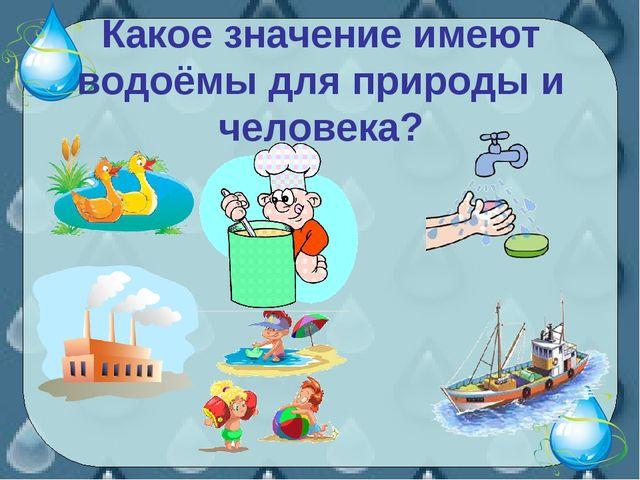 Какое значение имеют водоёмы для природы и человека?
