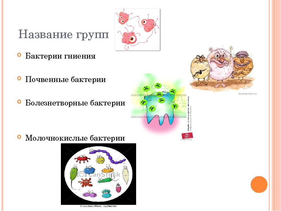 Название групп Бактерии гниения Почвенные бактерии Болезнетворные бактерии Мо...