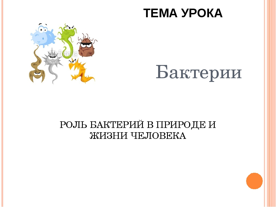 Бактерии РОЛЬ БАКТЕРИЙ В ПРИРОДЕ И ЖИЗНИ ЧЕЛОВЕКА ТЕМА УРОКА