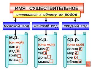 ИМЯ СУЩЕСТВИТЕЛЬНОЕ МУЖСКОЙ РОД ЖЕНСКИЙ РОД м.р. (он мой) пап а дяд я гриб пл
