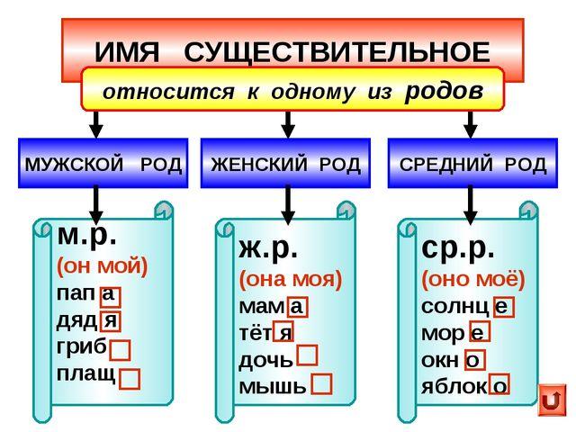 ИМЯ СУЩЕСТВИТЕЛЬНОЕ МУЖСКОЙ РОД ЖЕНСКИЙ РОД м.р. (он мой) пап а дяд я гриб пл...