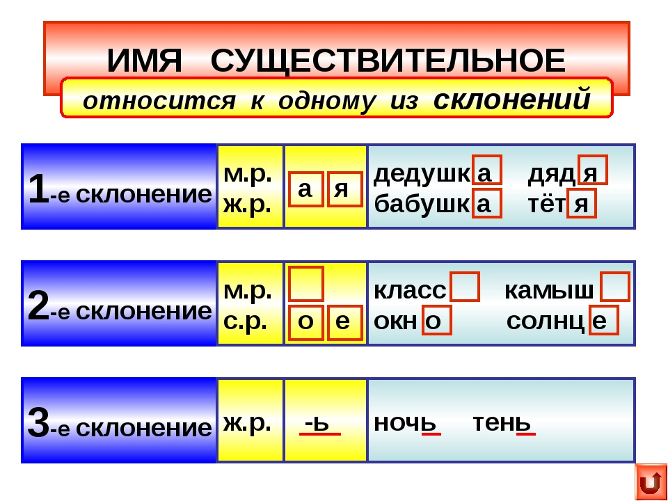 ИМЯ СУЩЕСТВИТЕЛЬНОЕ 1-е склонение 2-е склонение 3-е склонение относится к одн...