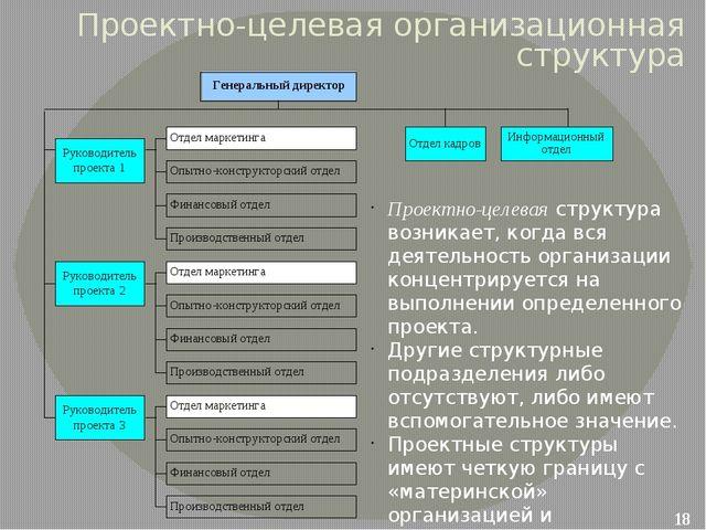 Проектно-целевая организационная структура Проектно-целевая структура возника...