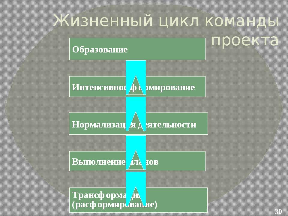 Жизненный цикл команды проекта Образование Интенсивное формирование Нормализа...