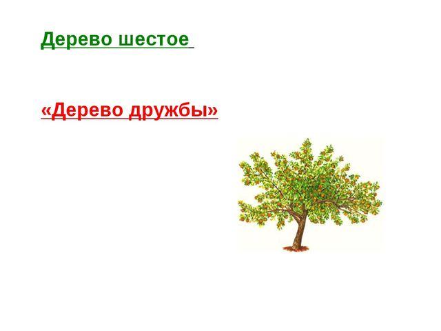 Дерево шестое «Дерево дружбы»