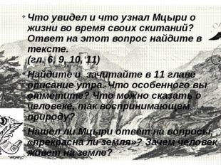 Что увидел и что узнал Мцыри о жизни во время своих скитаний? Ответ на этот
