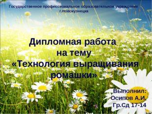 Государственное профессиональное образовательное учреждение г.Новокузнецка Ди