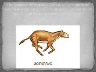 Появившееся 60 миллионов лет назад это животное зоологи назвали Эогиппус. Оно