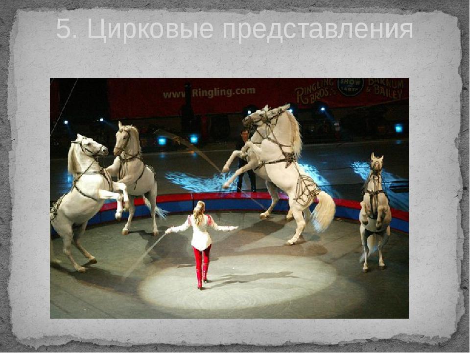 5. Цирковые представления