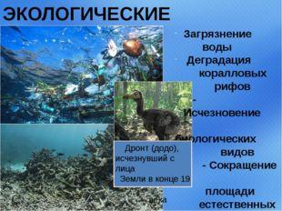 ЭКОЛОГИЧЕСКИЕ ПРОБЛЕМЫ Загрязнение воды Деградация коралловых рифов - Исчезно