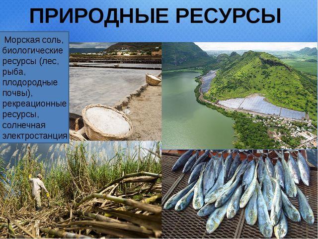 ПРИРОДНЫЕ РЕСУРСЫ Морская соль, биологические ресурсы (лес, рыба, плодородны...