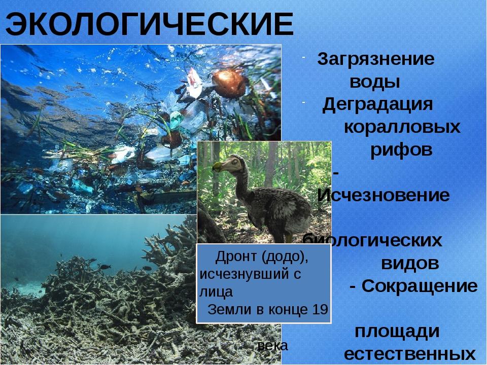 ЭКОЛОГИЧЕСКИЕ ПРОБЛЕМЫ Загрязнение воды Деградация коралловых рифов - Исчезно...
