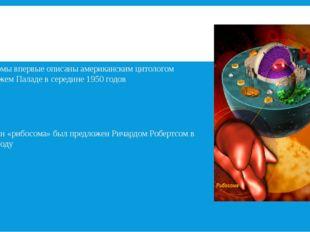 Рибосомы-мельчайшие органоиды сферической или слегка овальной формы, диаметро