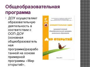 Общеобразовательная программа ДОУ осуществляет образовательную деятельность в