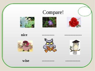 Compare! nice ---------- -------------- wise ---------- ------------ English